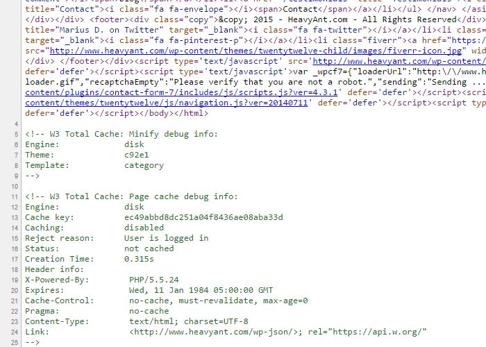 W3 Total Cache hide debug info | Heavy Ant